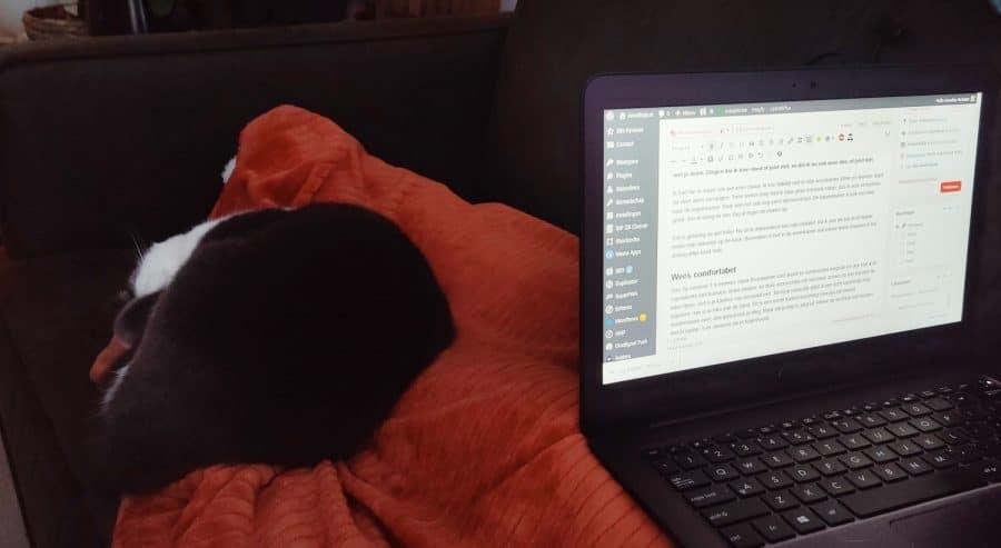 op de bank met kat en laptop